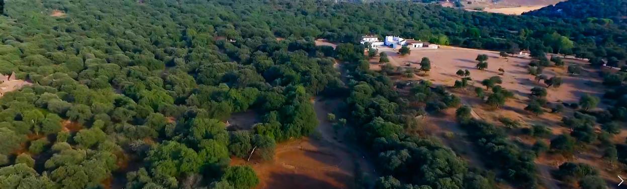 Vista aérea Finca La Algaba