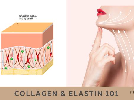 Collagen & Elastin 101