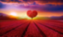 Love - 7 Virtues of Soul