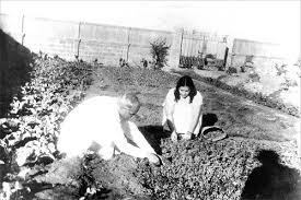 Baba Mamma planting - Karachi