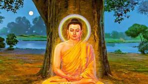 Revelations on Gautam Buddha and Buddhism