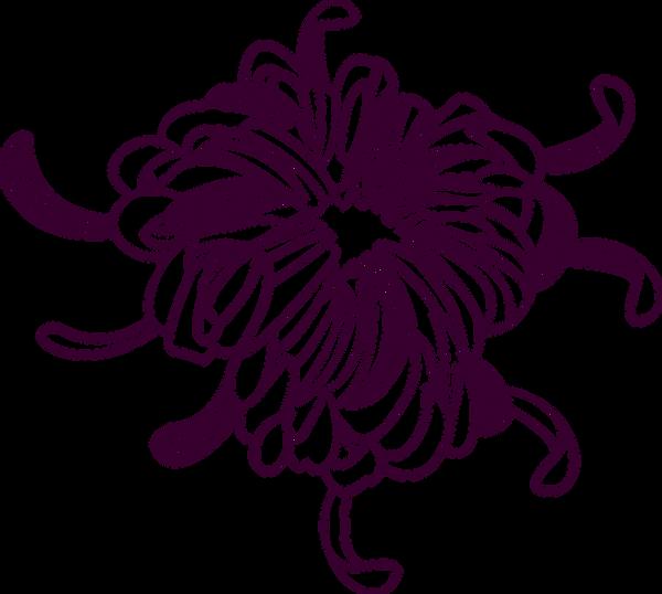 Blumen-Kontur
