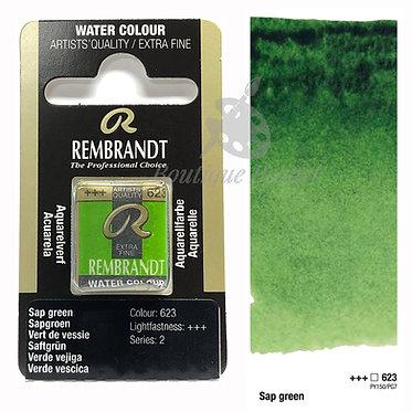 Aquarelle Extra-fine Rembrandt - Vert de Vessie 623 série 2