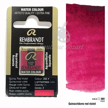Aquarelle Extra-fine Rembrandt - Rouge Violet Quinacridone 365 série 2