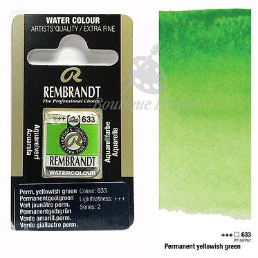 Aquarelle Extra-fine Rembrandt - Vert Jaunâtre Permanent 633 série 2