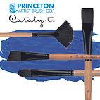 gamme catalyst princeton.jpg