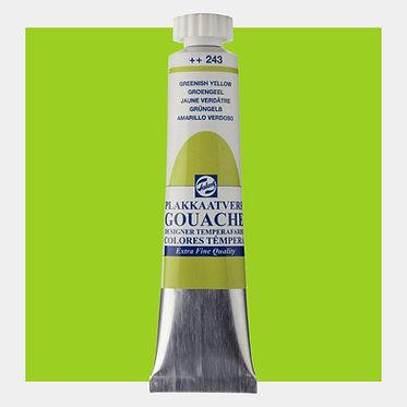 Gouache Extra-fine Quality Talens - Vert jaunâtre 243
