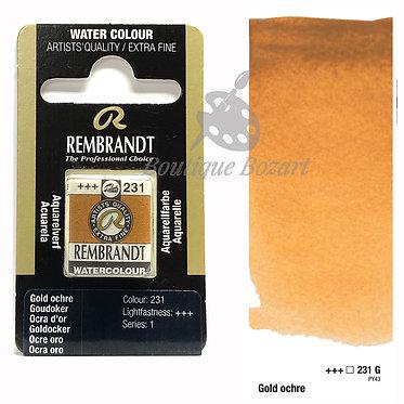 Aquarelle Extra-fine Rembrandt - Ocre d'Or 231G série 1