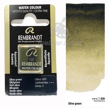 Aquarelle Extra-fine Rembrandt - Vert Olive 620 série 2