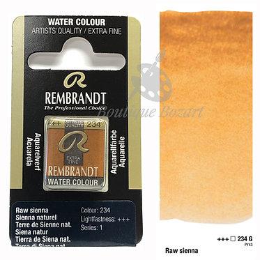 Aquarelle Extra-fine Rembrandt - Terre Sienne Naturelle 234G série 1