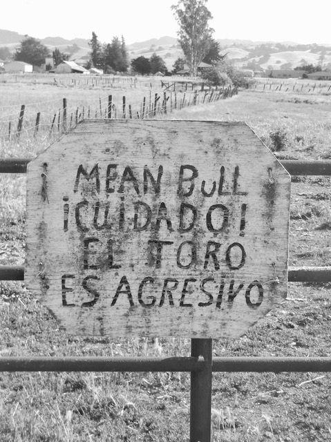 Rural life_PT_L (1).jpg