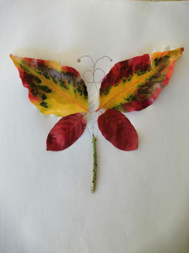 Leaf-butterfly