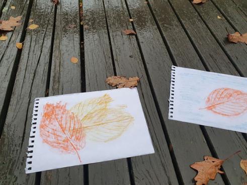Watercolour pencil leaf rubbings