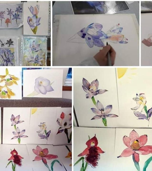 Nature art - orchids