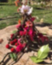 Fleur Steiner 1.jpg