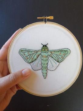 Puriri moth embroidery
