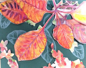 Watercolour and collage nature art, leaves