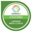 emotional-intelligence-certified-meta-co