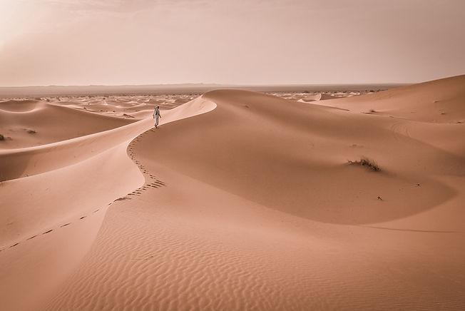 TURQUÍA Y DUBAI