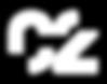 C2 logo_white.png