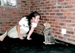 Cheetah cub named Mufasa