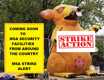 MSA-SECURITY-STRIKE-ALERT.png