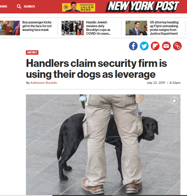 msa-security-dog-leverage.PNG