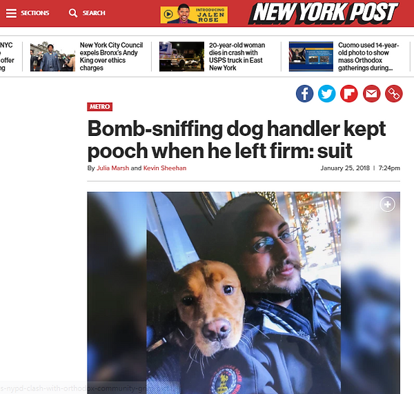 msa-security-dog-handler-kept-dog.PNG