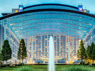 113 Gaylord Resort and Convention Center Security Officers and Delta Safety Officers Votes to Become
