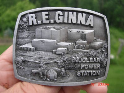 Our Affiliated Union NUNSO Files an Election to Represent the 72 Ginna Nuclear Security Officers