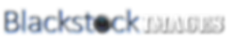Black stock logo 2.png