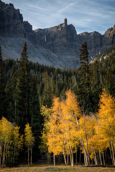 Great Basin Autumn