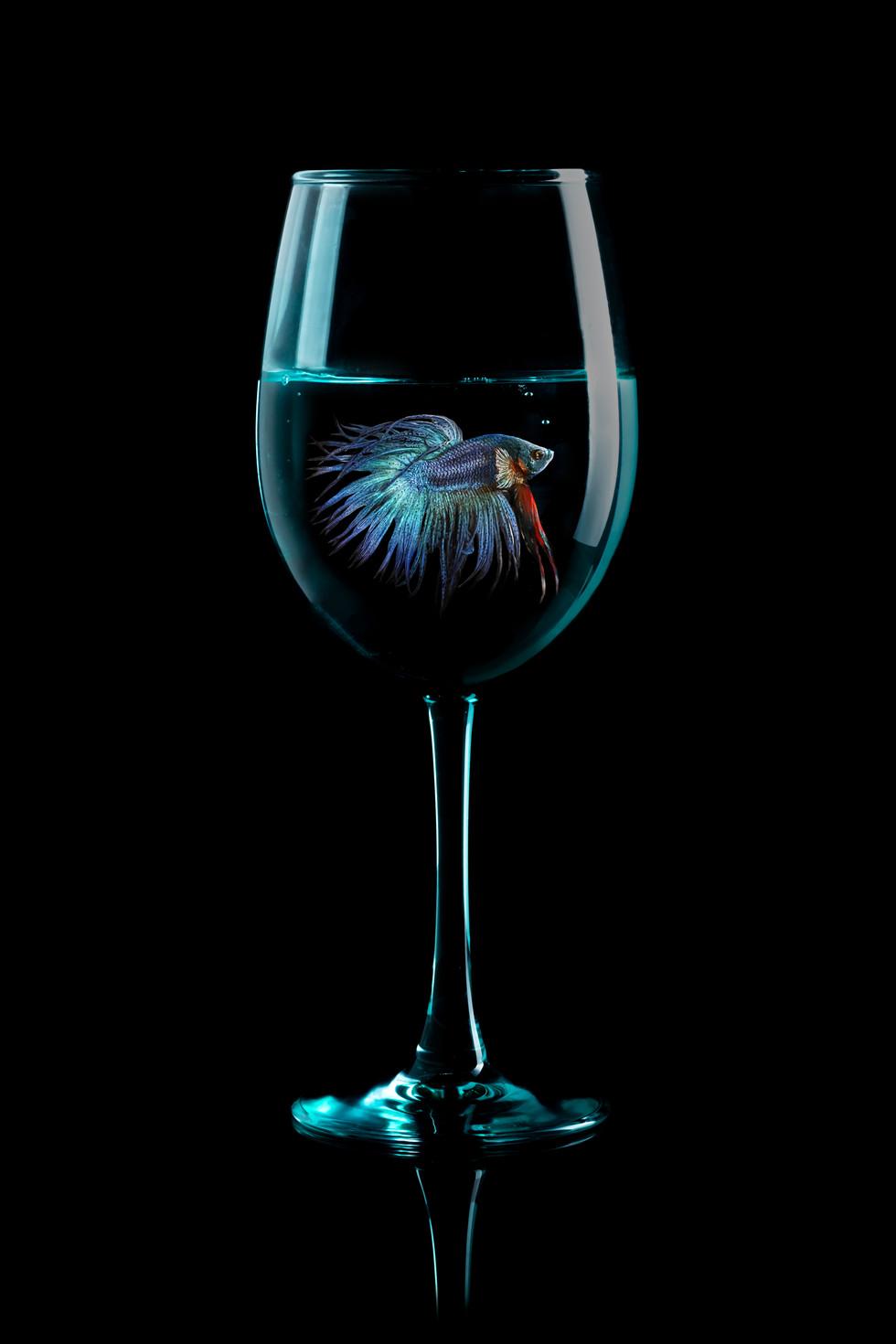 Odin in a Glass.jpg