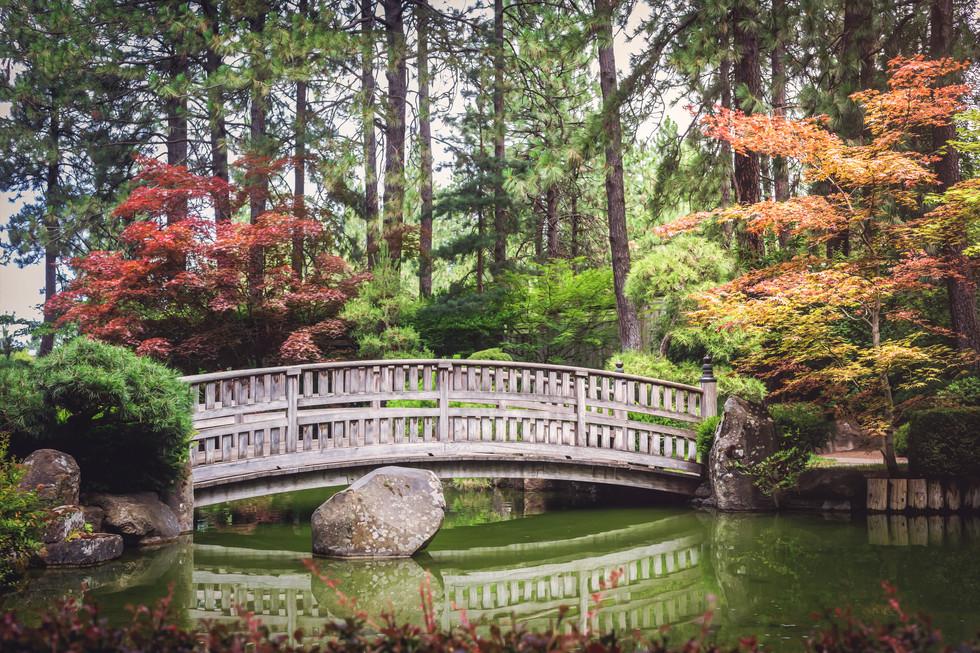 japanese gardens bridge.jpg