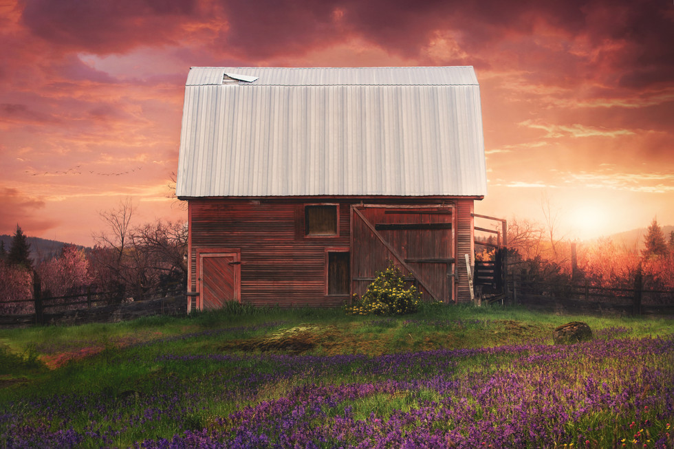 Sunset Barn.jpg