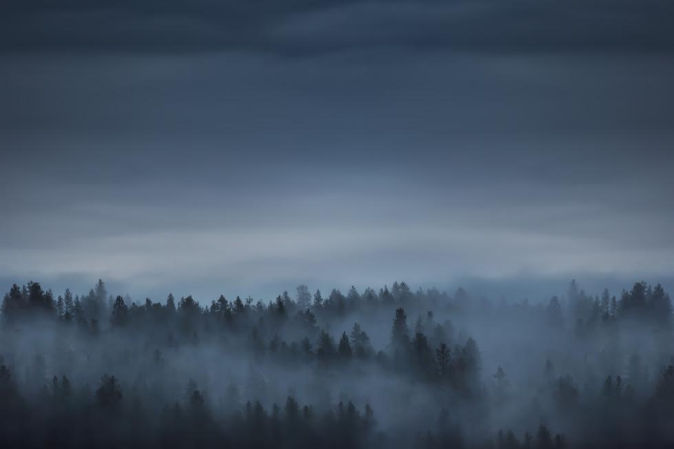 Foggy Mountain.jpg