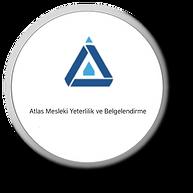 atlas myb