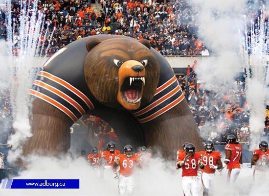 bear-mascot