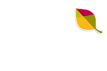 BENESTAR-Logo-Blanco.png