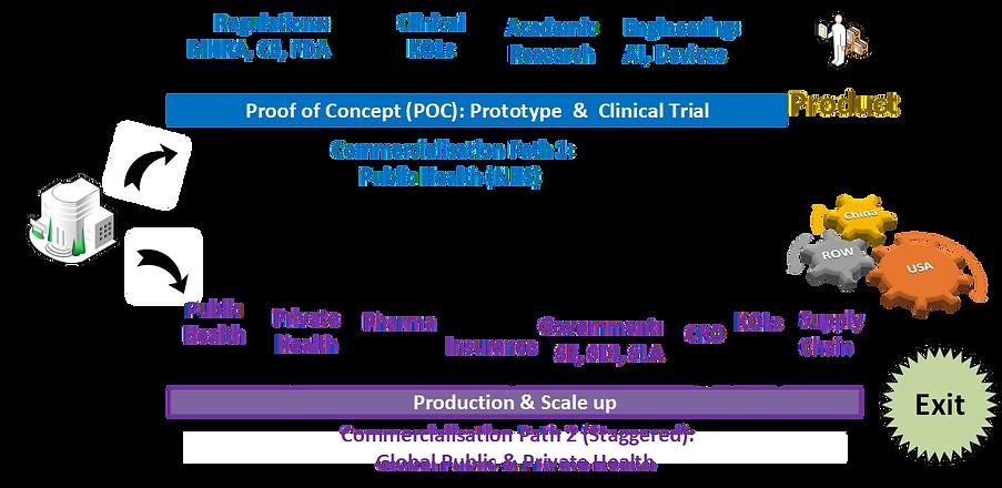 Healthcare Ecosystem, Dunedin Solutions