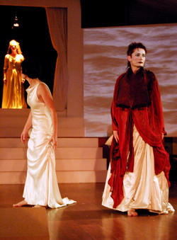 The Medea Project