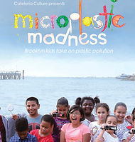 MicroplasticMadness.jpg