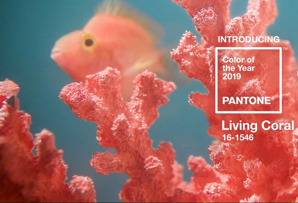 Pantone Colorof the Year