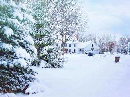 ¿Dónde nació el árbol de Navidad?