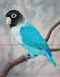 teal bird.JPG