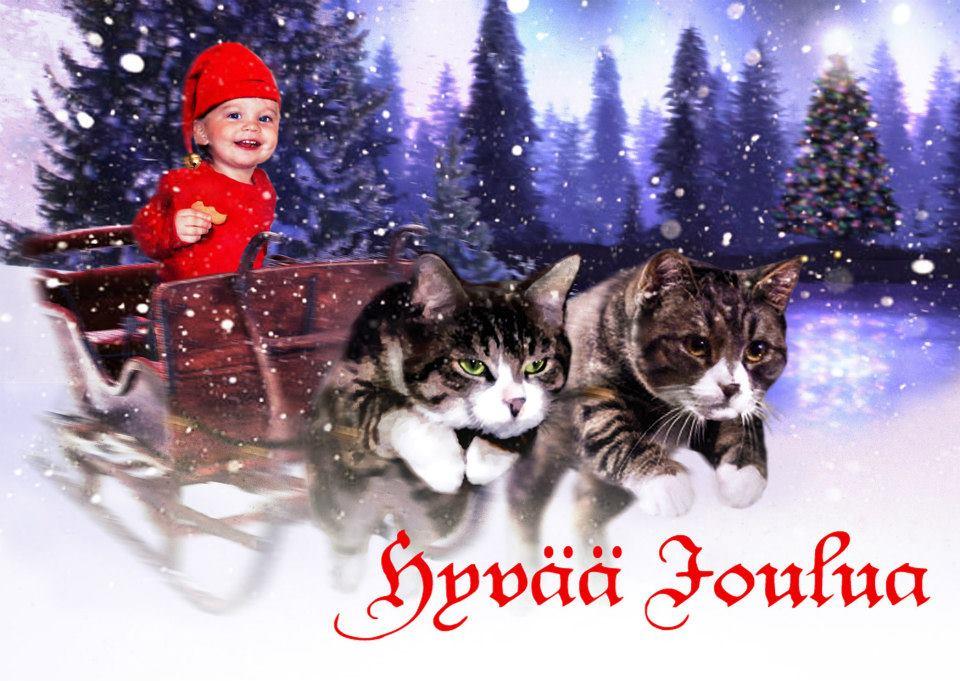 Joulukortti 2012