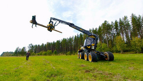 Finnish Daredevils The Dudesons Take Their Country's Innovations to the Extreme