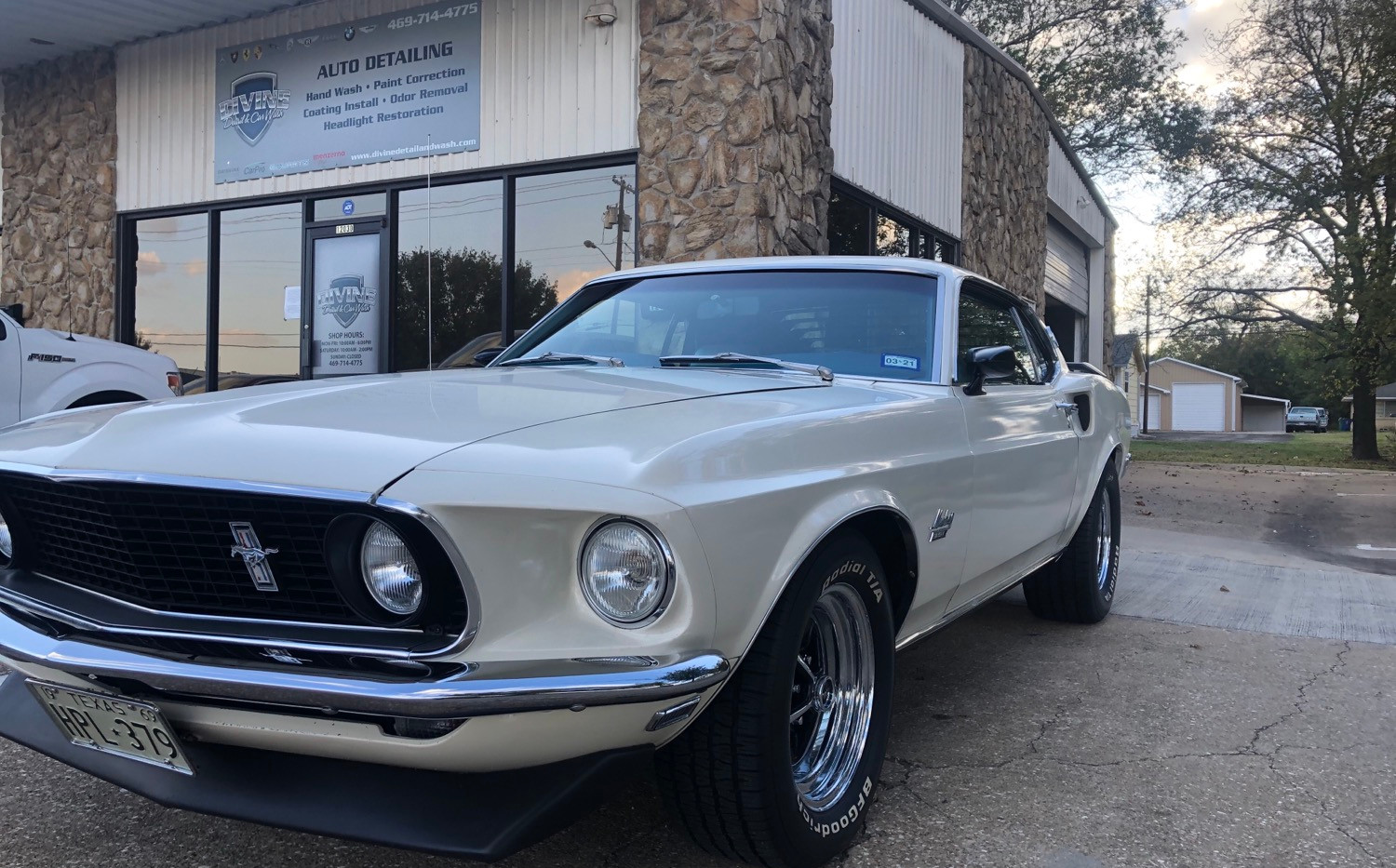 69 Mustang 351 Fastback