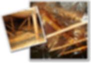 attic-guard.jpg