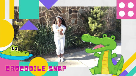 Inspired by the Iconic character Crocodile Dundee  The Crocodile Snap is a dance-a-long for children.